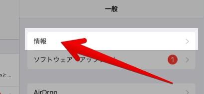 iOS設定の一般-情報